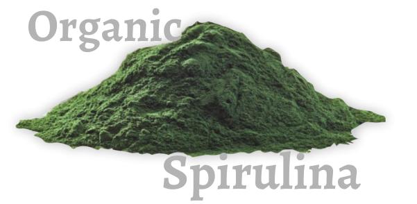 Organic Spirulina powder in nagpur